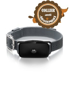 collier-chien-motorola-bark-200u