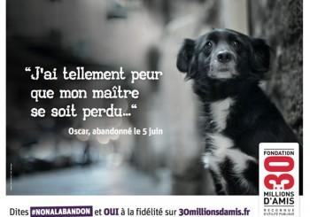 campagne-contre-abandon-chien