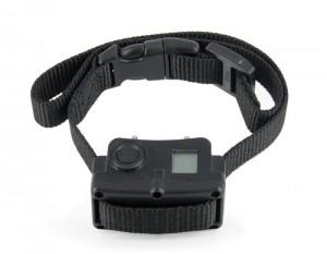 petsafe-collier-rechargeable-pbc45-13466