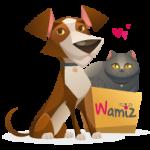 commande-wamiz-box