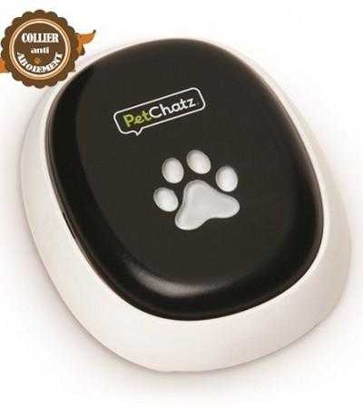 Le meilleur visiophone pour chien : Petchatz HD