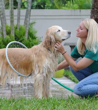 Laver efficacement et en toute simplicité votre chien grâce au Woof Washer 360