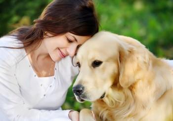 homme-meilleur-ami-du-chien
