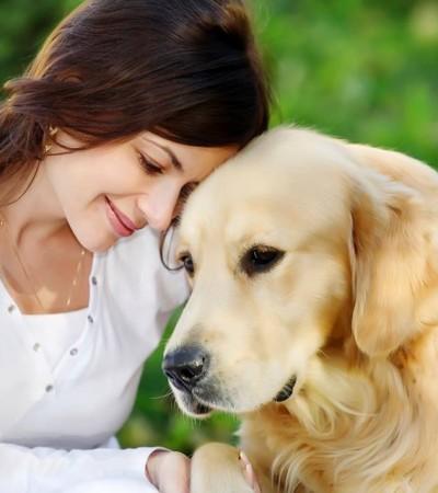 Une vidéo qui prouve bien que le chien est le meilleur ami de l'homme !
