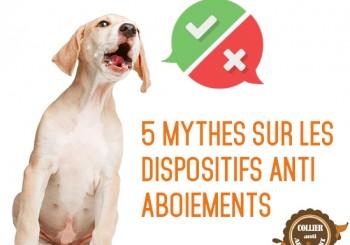 5 mythes sur les colliers anti aboiements