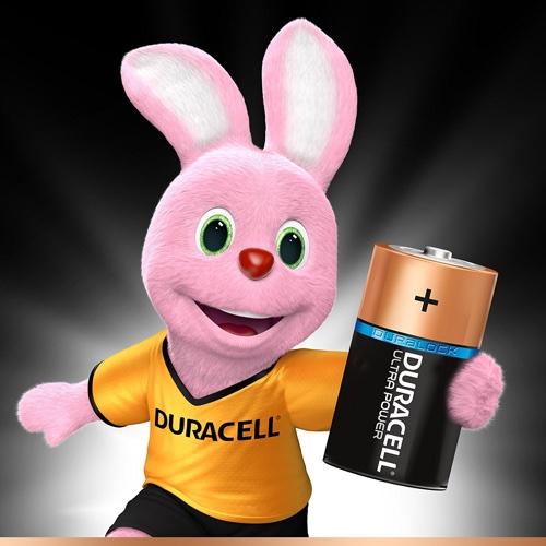 Duracell Pile D